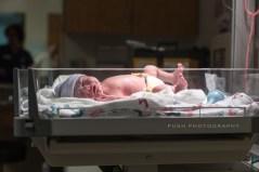 WM Roberds Birth-136