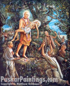 Lord Chaitanya carries Haridas Thakur light