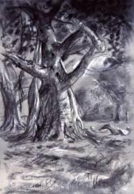 Trees Charcoal chalk