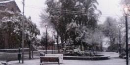 nevada1 15 julio 17