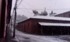 nieve7