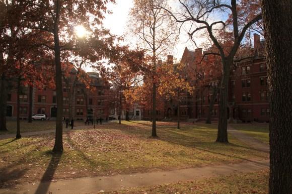 Harvard Yard, au coeur du campus d'Harvard