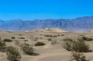 Le désert !