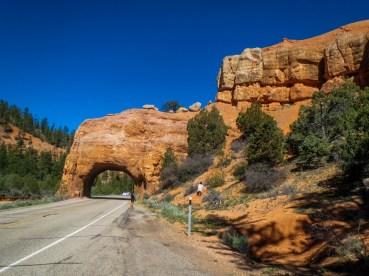 Red Canyon, en sortant de Bryce Canyon.