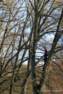 foto-68f-33-kletterfrau-vom-park