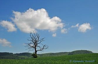 Foto-73d-(44)-Heimat