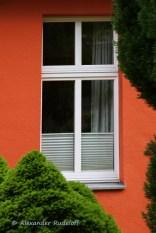 Foto-74-(303)-windows