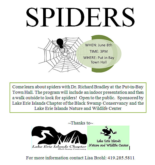 Spiders_LEIC