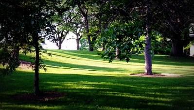 Lonz lawn