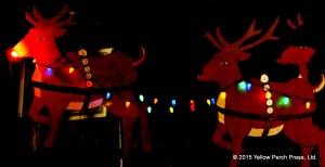 lights_xmas_12092015 (13)
