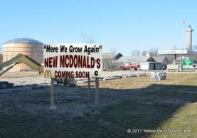McDonald's Put in Bay