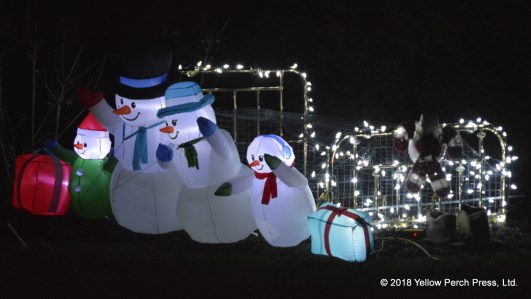 Put in Bay Holiday Lights