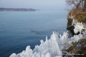 Massie Cliffside Preserve