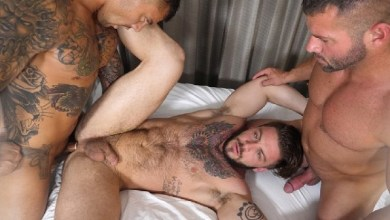 Photo of TheGuySite – Popping Seth Cherry – Bane e Danny