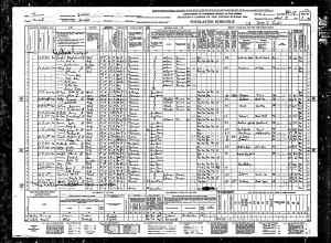 1940 US Census  Waldo, Russell county, Kansas