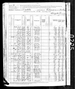 1880 US Census Castleton, Richmond County, New York