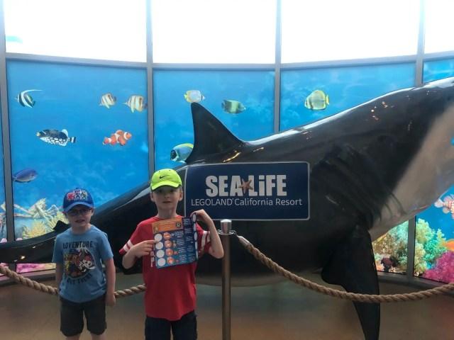 SEA LIFE Aquarium Treasure Hunt