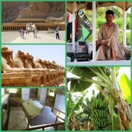 Luxor i rijeka Nil 2