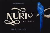Last preview image of Nuri