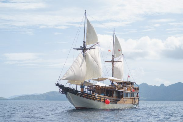 Charter Cajoma Boat III Phinisi