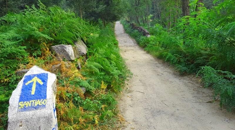 Što je El Camino de Santiago?