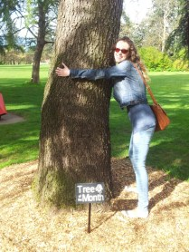 Tree of the Month is apparently a thing at the Botanical Gardens