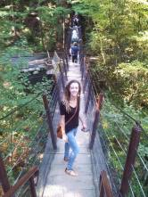 The Treetop Adventure