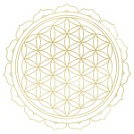 sacred geometry, flower of life, lotus, gold flower of life