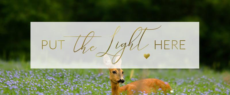 spring news, spring newsletter, april newsletter, wellness news, holistic healing ottawa
