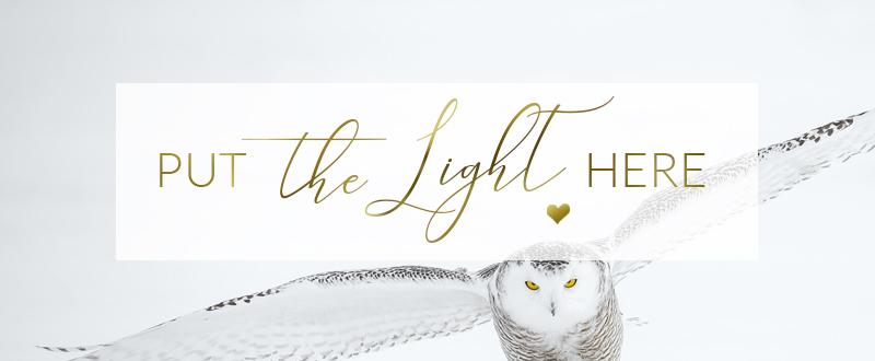 owl totem, owl spirit animal, ontario healer, canada healer, shamanic healer