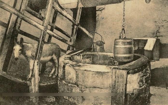 magarac i bunar