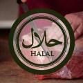 Halal meso
