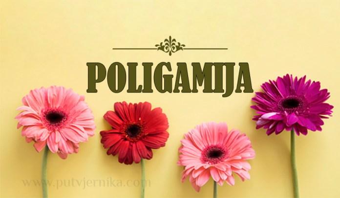 poligamija, visezenstvo