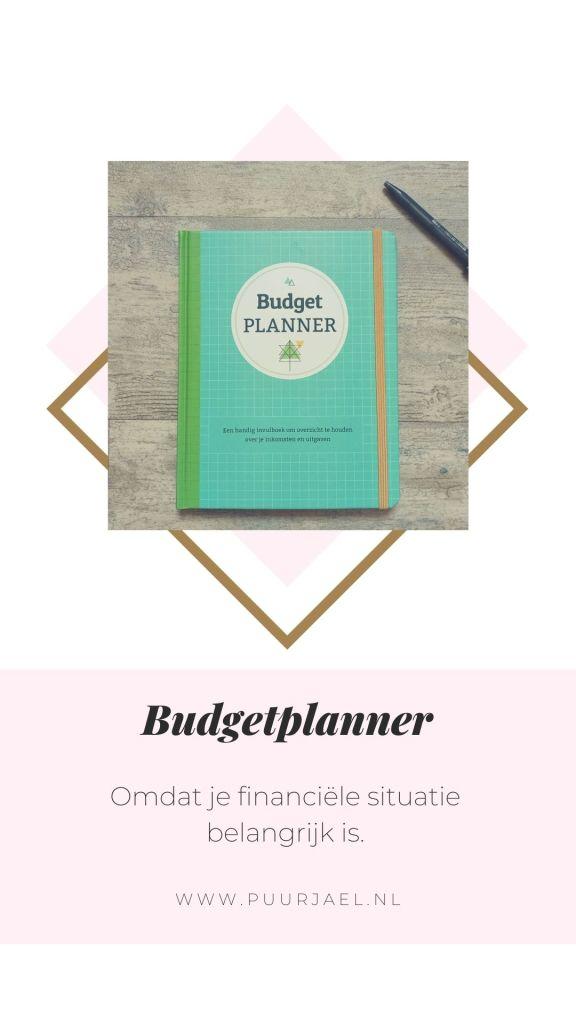 Budgetplanner - pinterest