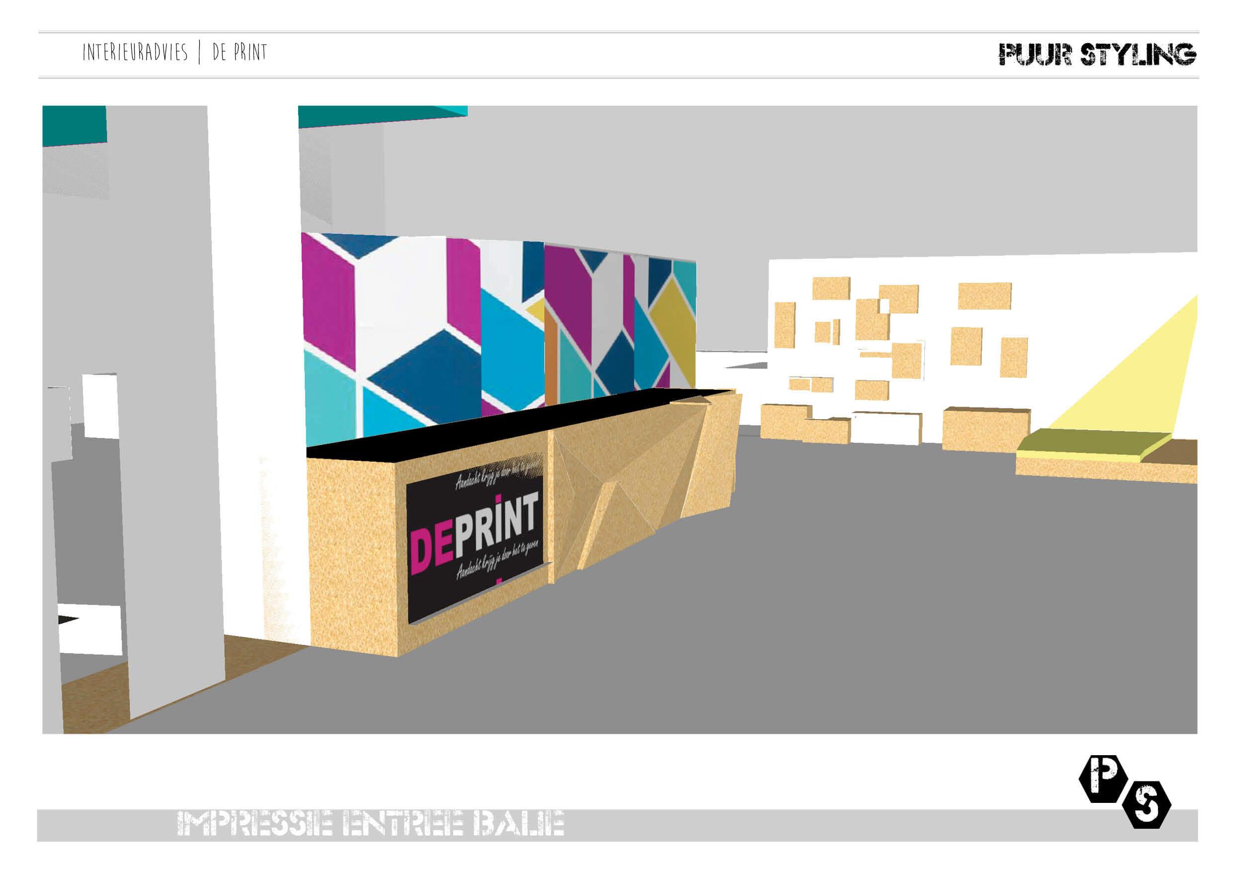 interieuradvies 3D de Print Winsum2