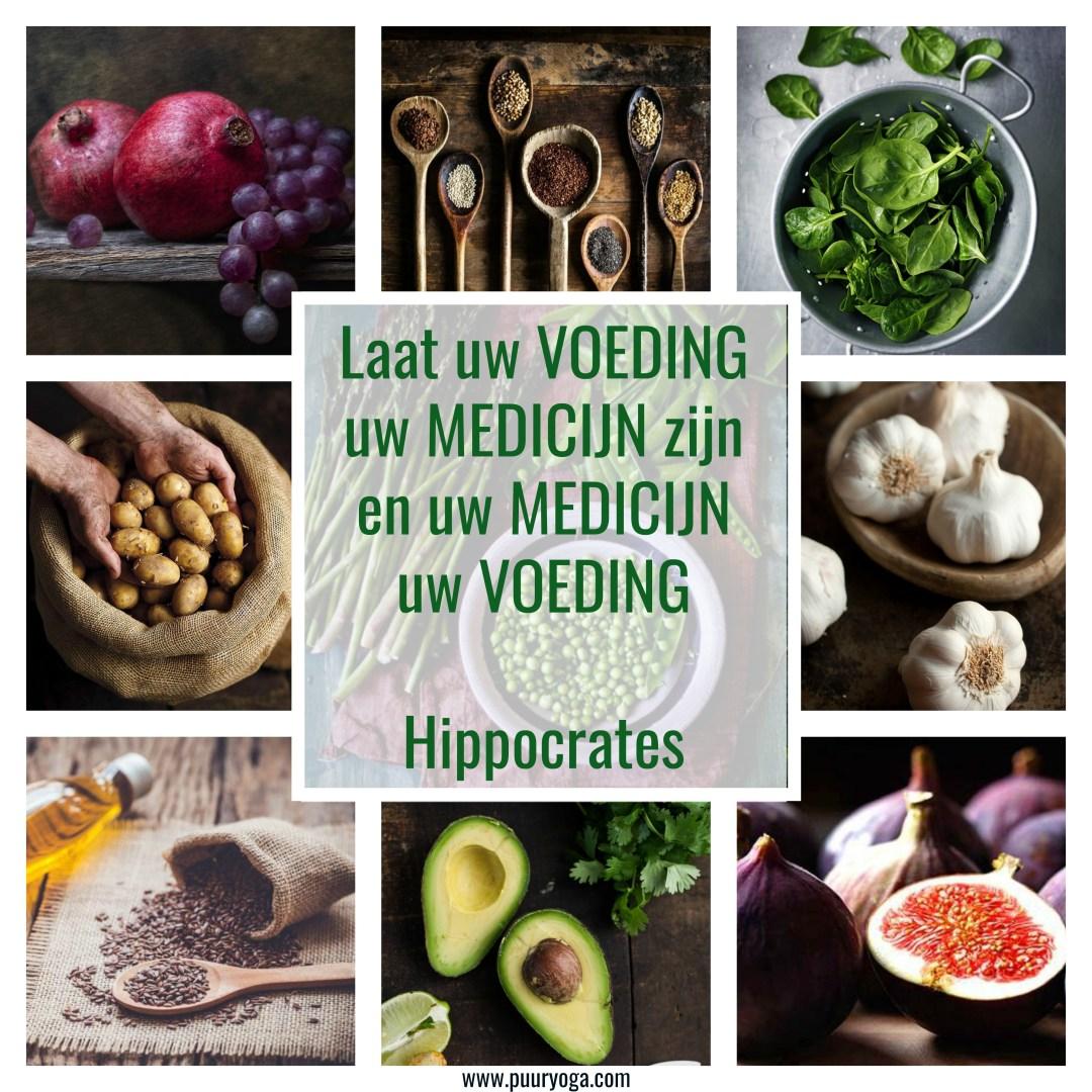 voeding als medicijn .jpg
