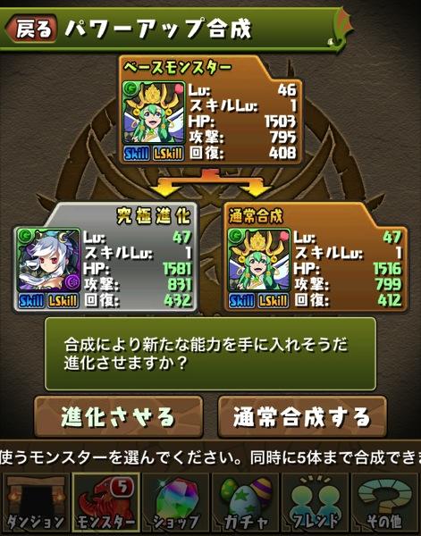 Seless kyukyoku 20130820 2