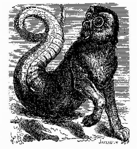 Aamon from the Dictionnaire Infernal