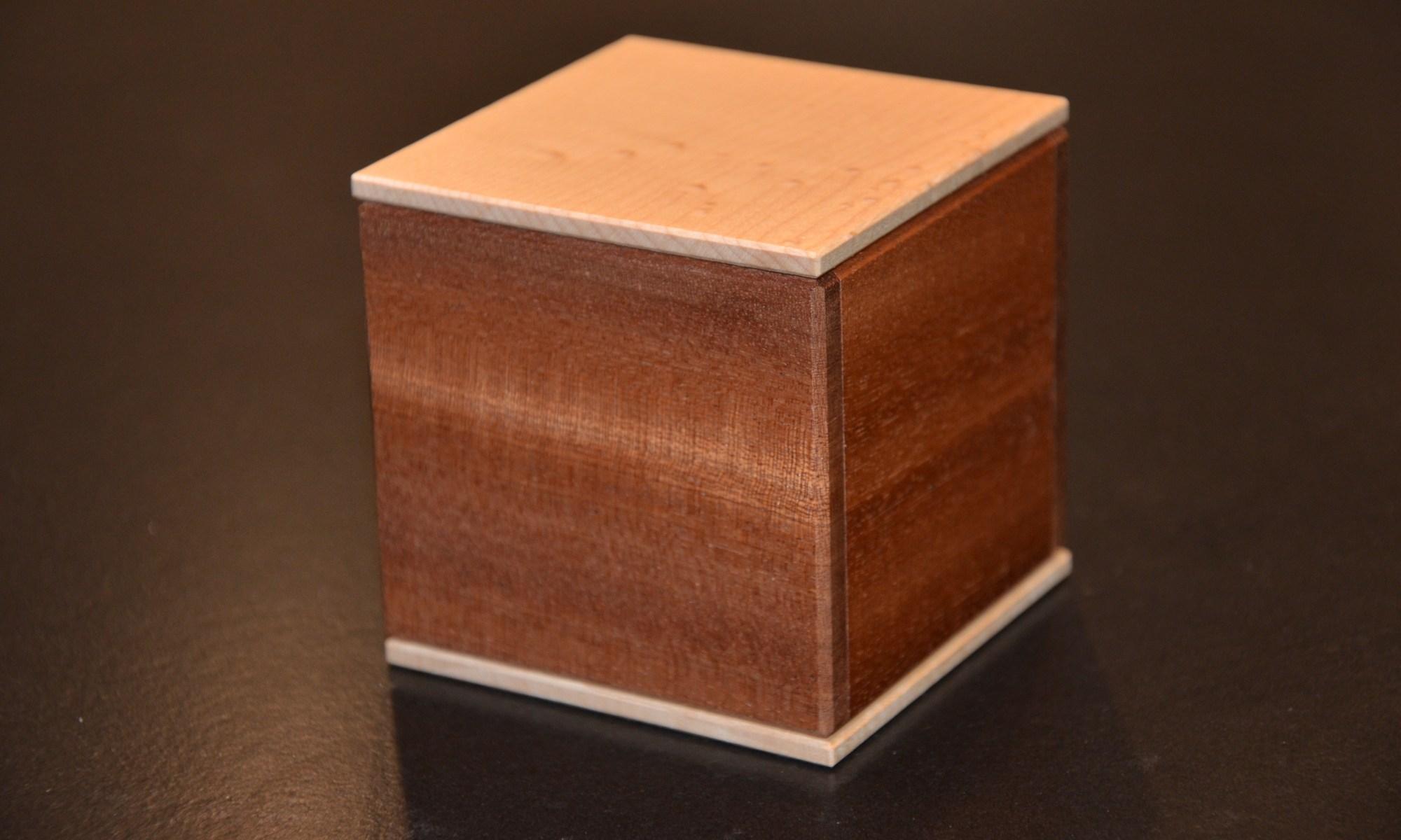 Wood Puzzle Pusher