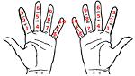 Dozenal Finger Counting