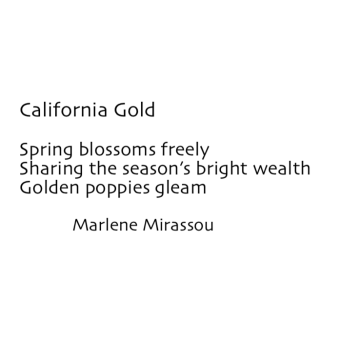 California Gold by Marlene Mirassou