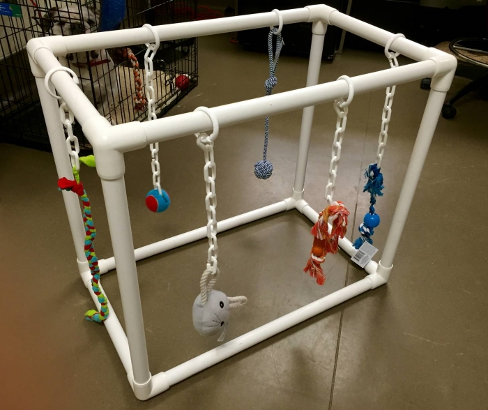 DIY PVC Puppy Play Gym by Asheville Human Society