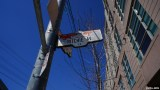 Roncesvalles Ave (18)