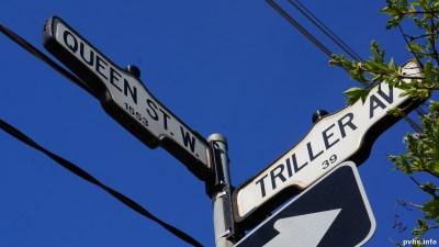 Triller Ave (15)
