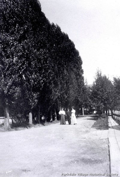 1897 Cliff Rd., looking e. towards Dowling Ave., C.N.R. tracks behind_tn
