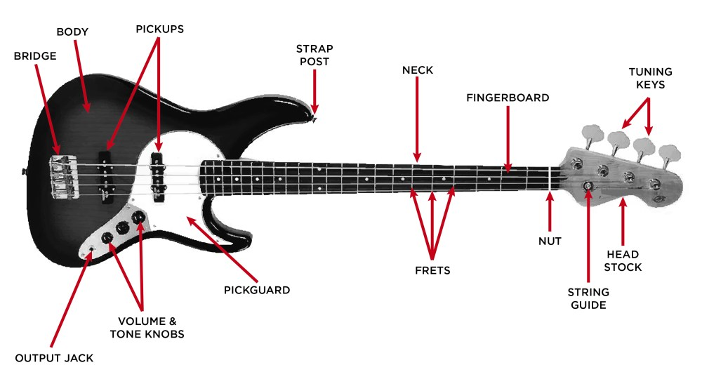 medium resolution of electric bass guitar diagram