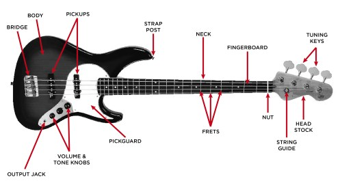 small resolution of electric bass guitar diagram