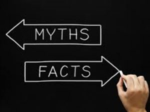 marketing myths and facts when reading pet food labels