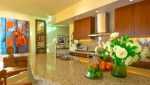 V-Conchas -Chinas-Puerto-Vallarta-Real-Estate-PV-Realty--45