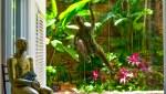 Casa_Jardin_Puerto_Vallarta_Real_estate_5